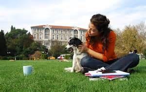 dog at campus