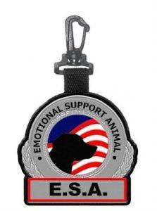 esa badge clip