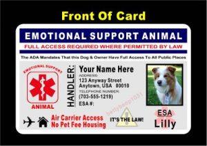 esa id card