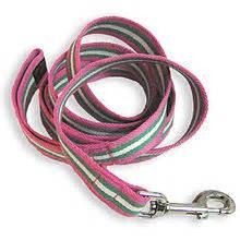 Dos and Don'ts of Dog Leashes