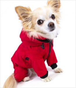 Snow Suits For Dogs